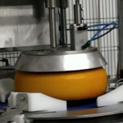 Rotary Portion Cutter